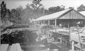 004468D: Hoffman Mill, ca.1903